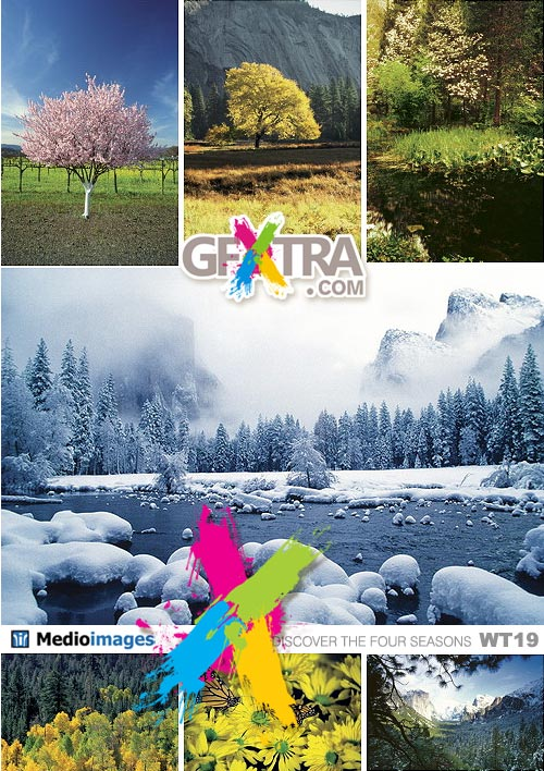 Medio Images WT19 Discover The Four Seasons