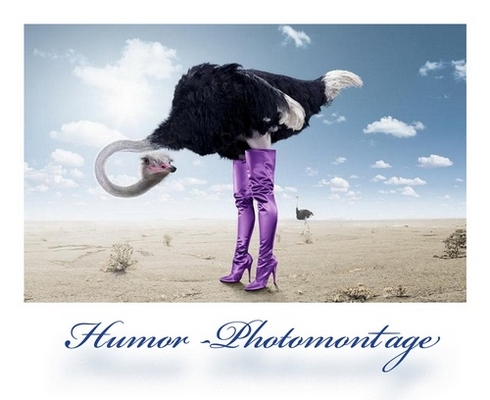 Humor- Photomontage