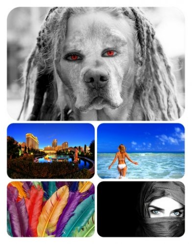 Beautiful Mixed Wallpapers Pack40