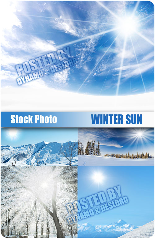 UHQ Stock Photo - Winter Sun