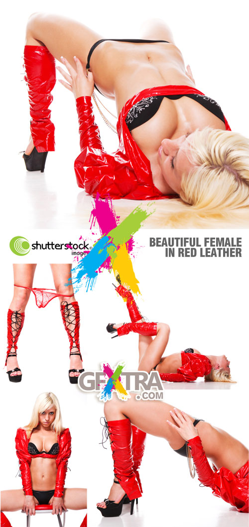 Shutterstock - Beautiful Female in Red Leather 5xJPGs