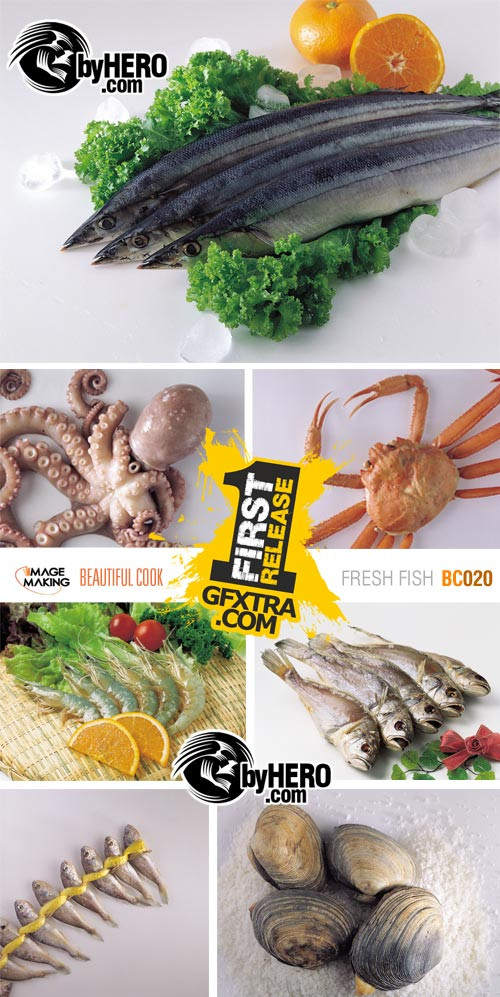 Image Making: Beautiful Cook 020 - Fresh Fish