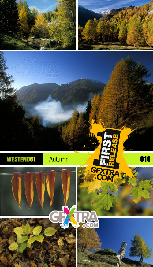 WestEnd61 Vol.014 Autumn