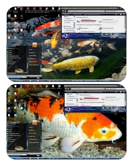 Theme for Windows 7 - Fish