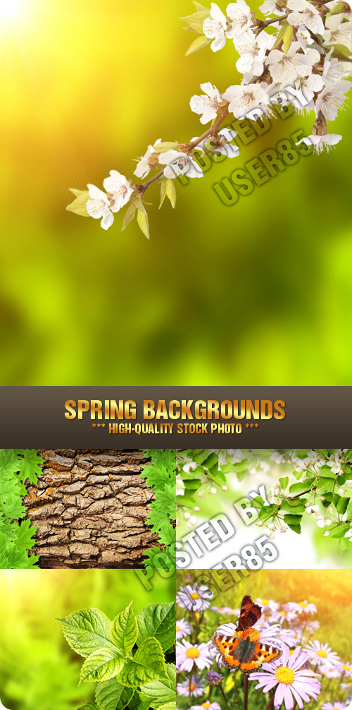 Stock Photo - Spring Backgrounds