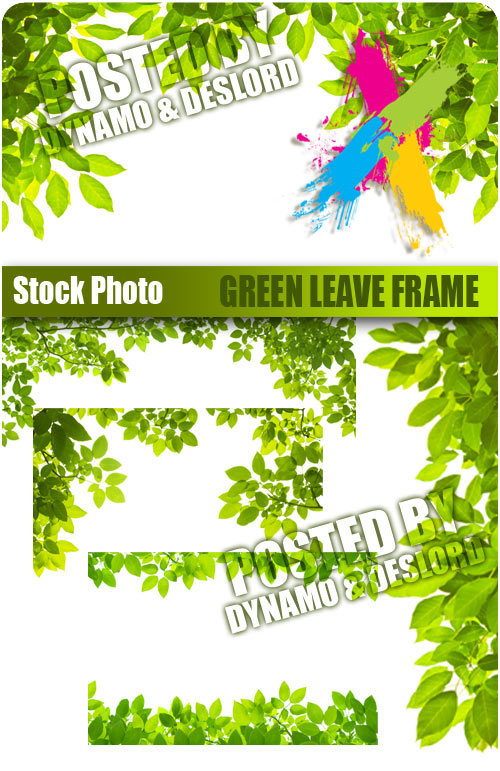 Green leave frame - UHQ Stock Photo
