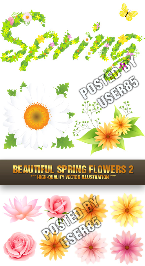 Stock Vector - Beautiful Spring Flowers 2