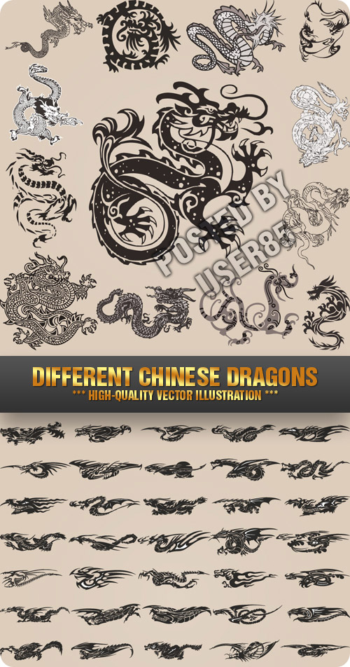 Stock Vector - Different Chinese Dragons