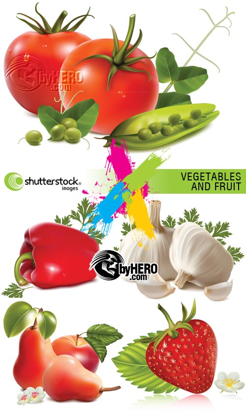 Vegetables and Fruits 5xEPS Vector SS
