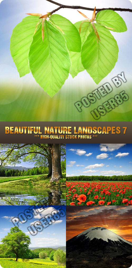 Stock Photo - Beautiful Nature Landscapes 6