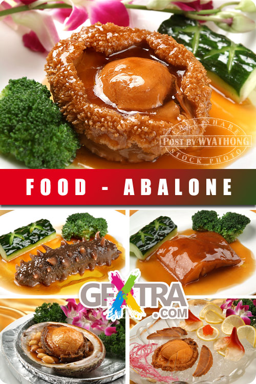 Stock Photo - Abalone