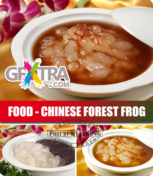 Stock Photo - Chinese Forest Frog