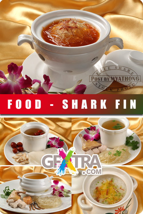 Stock Photo - Shark Fin 2