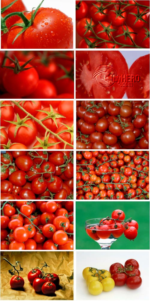 Tomatoes 72xJPGs