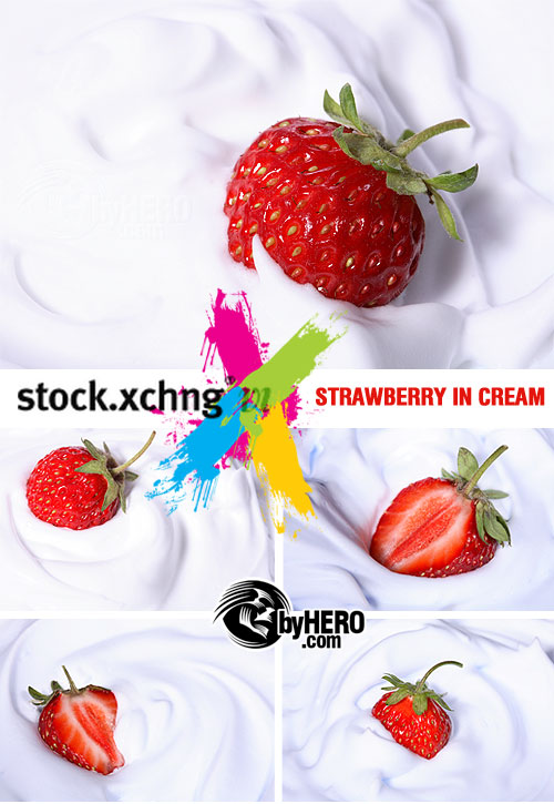 StockXchange - Strawberry in Cream 5xJPGs
