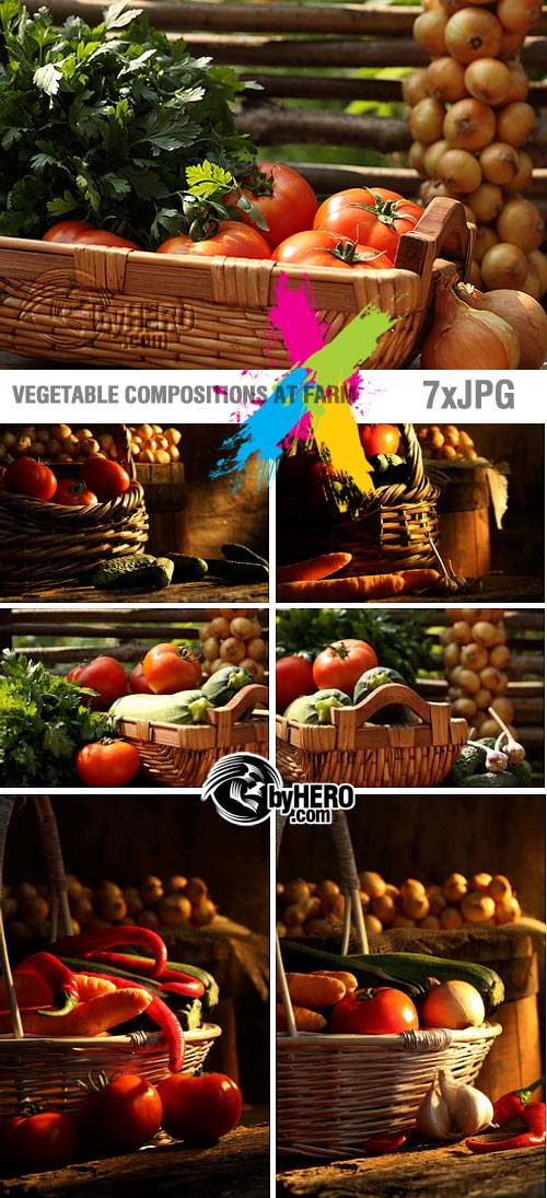 Stock - Vegetable Compositions at Farm 7xJPGs