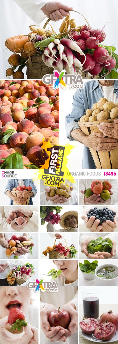 Image Source IS495 Organic Foods