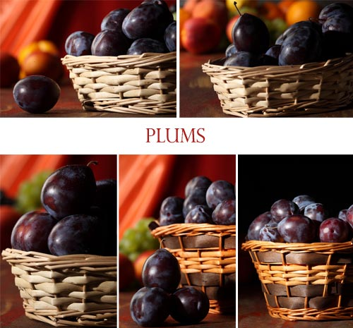 Stock Images - Plums 5xJPGs