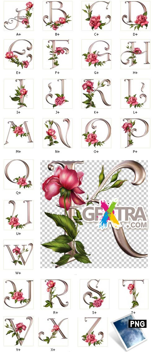 Rose Wedding - PNG Letters