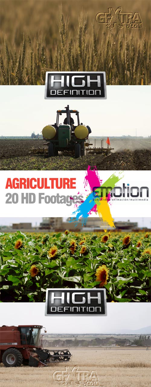 Agriculture - 20 HD Footages