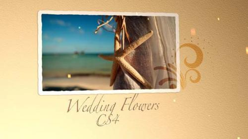 After Effects VideoHive - Wedding Flowers CS4
