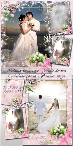 Wedding framework - Gentle dreams