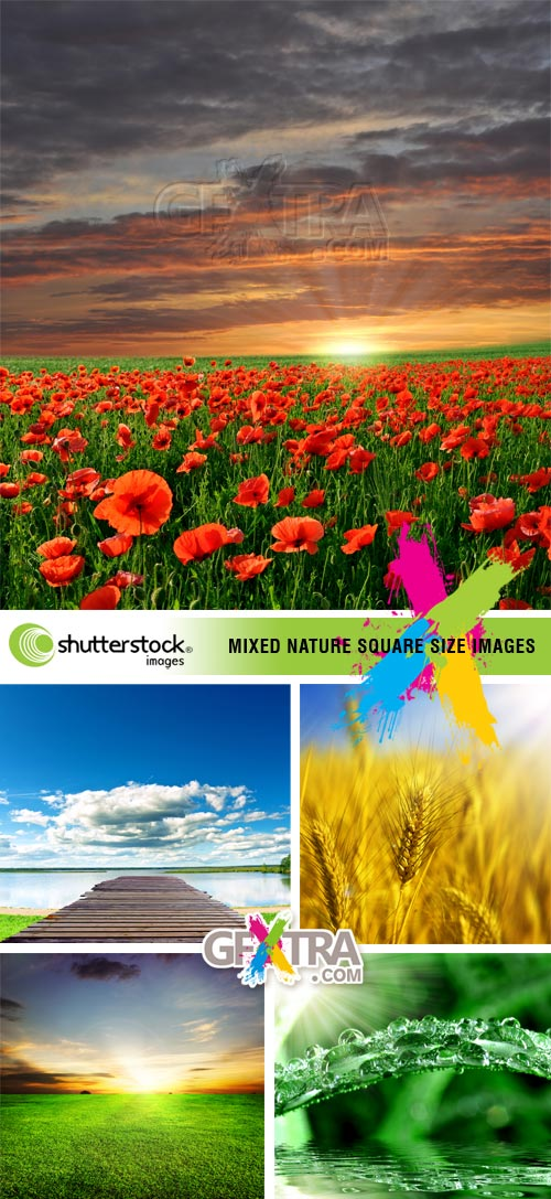 Mixed Nature Squre Size Images 5xJPGs - Shutterstock