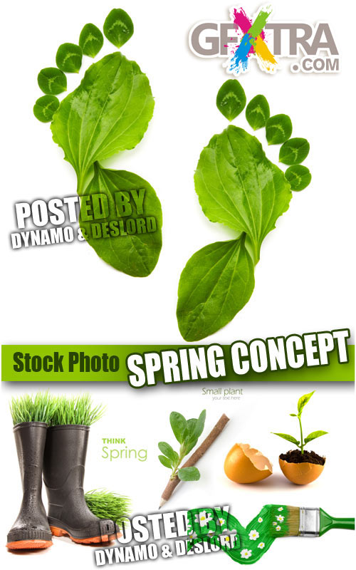 Spring concept - UHQ Stock Photo