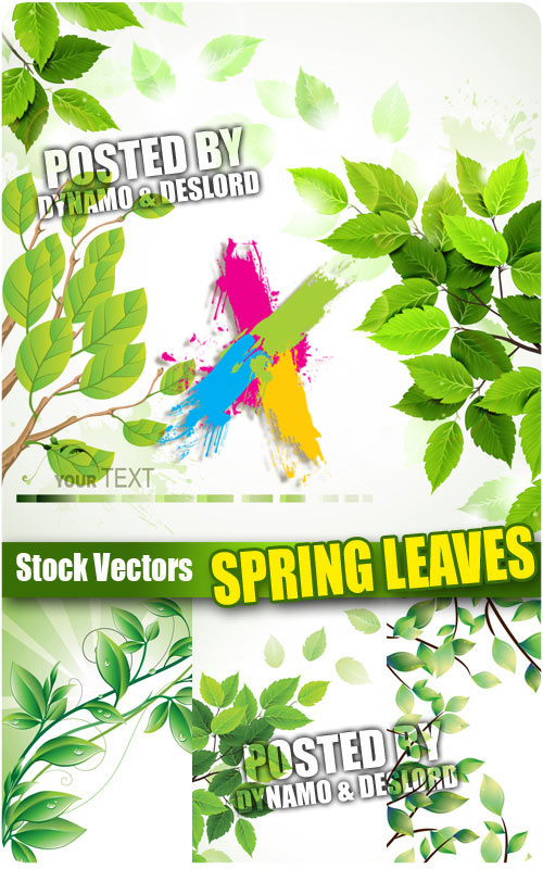Spring leaves - Stock Vectors