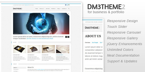 ThemeForest - Dm3theme2 - Business and Portfolio