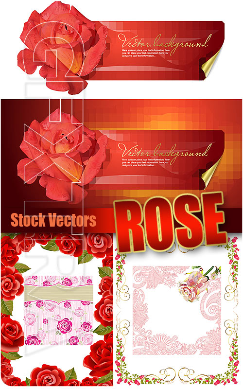 Rose - Stock Vectors