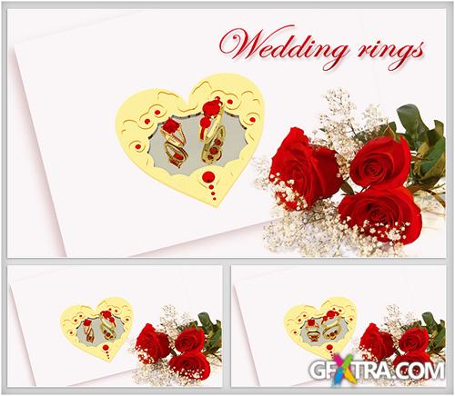 Footage HD - Romantic Backgrounds Wedding Rings - Creative Video Footage For Wedding With Red Roses