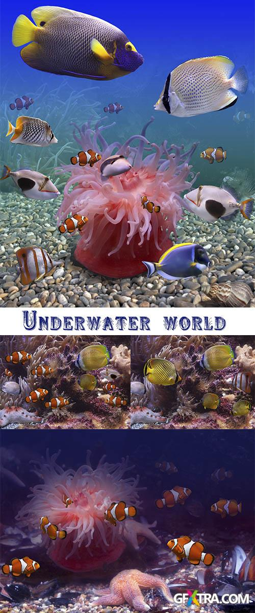 Stock Photo: Underwater world, fishes and seabed