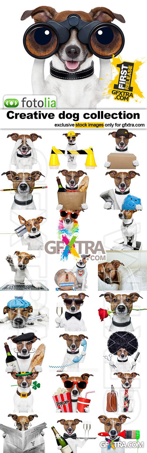 The Creative DOG - 25x JPEGs