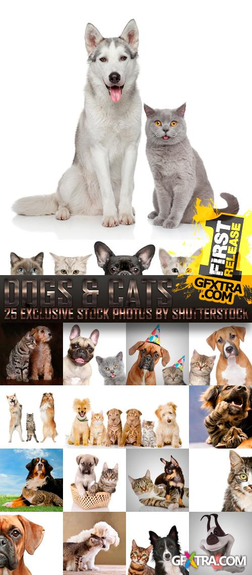 Amazing SS - Dogs & Cats, 25xJPGs