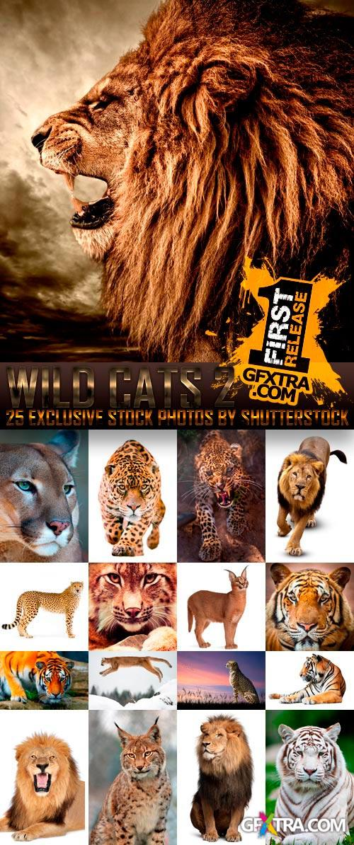 Amazing SS - Wild Cats 2, 25xJPGs