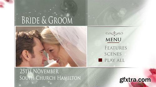 Wedding Shimmer 177 (Digital Video Team)