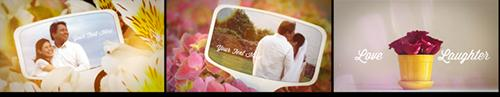 Videohive Photographs and Memories Bloom