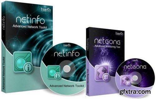 NetInfo 8.3 Build 915 / NetGong 8.3 Build 915