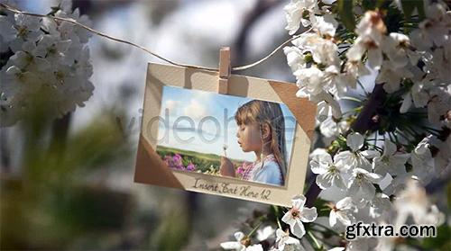 Videohive VideoHive Photos Hanging in an Orchard 4723047