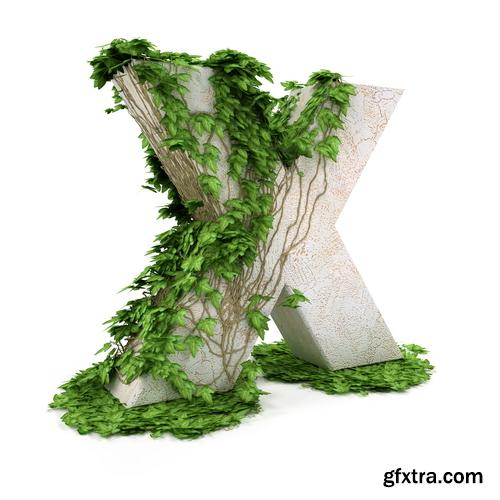 3D Alphabet: Letters & Numbers Covered with Ivy 36xJPGs