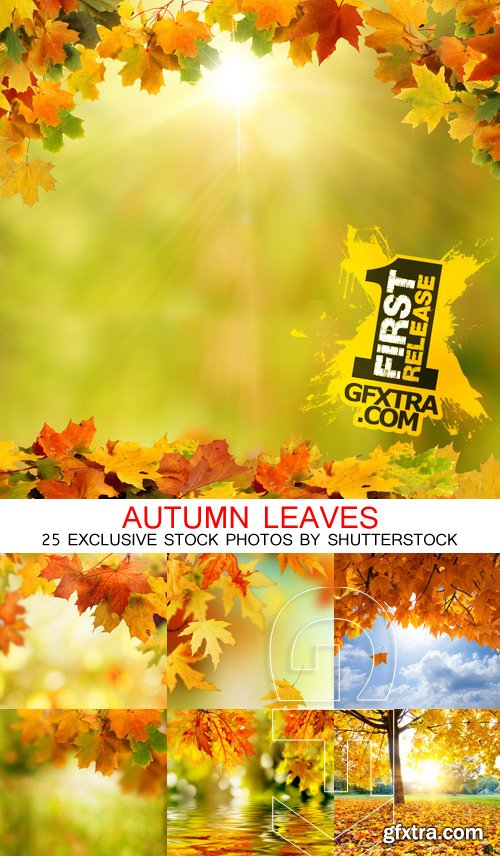 Amazing SS - Autumn leaves, 25xJPGs