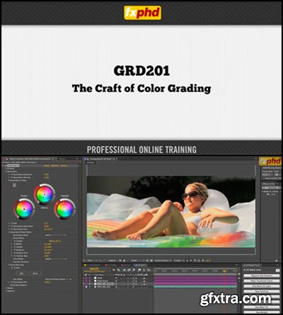 Professor Craig Leffel - GRD201 : The Craft of Color Grading