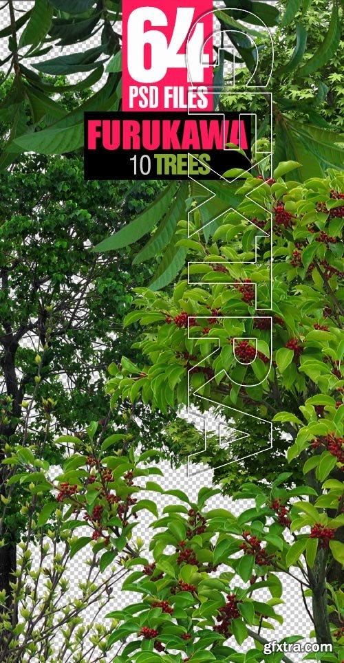 Furukawa 10 Trees 64xPSD