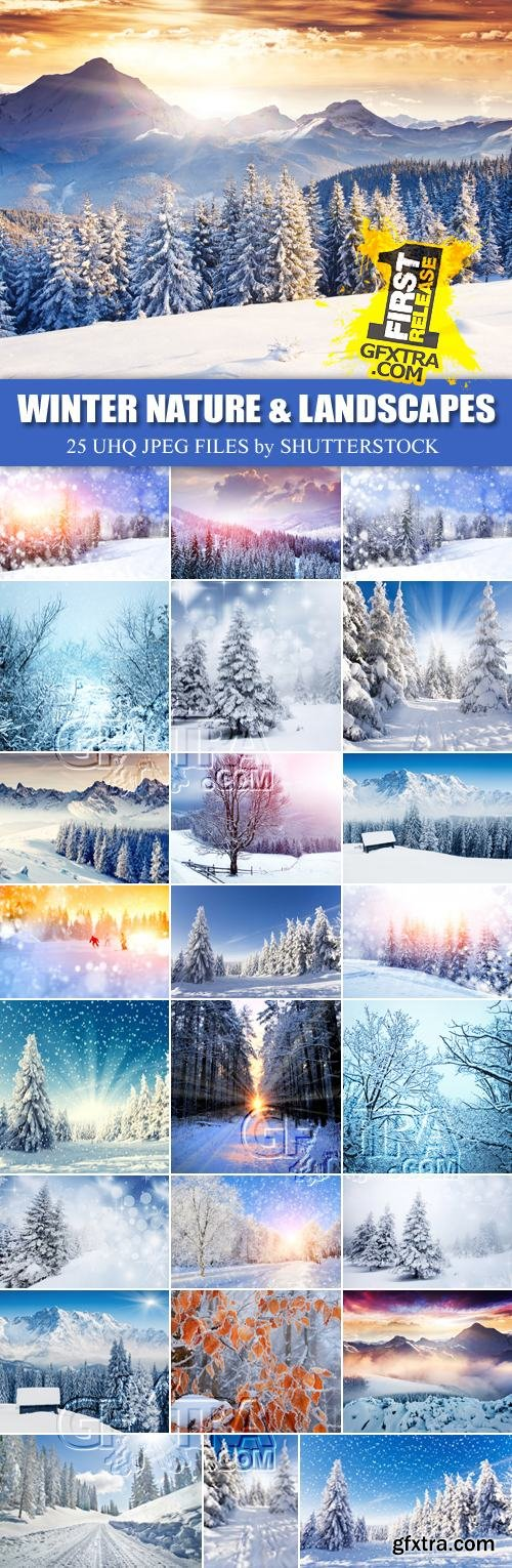 Stock Photo - Winter Nature & Landscapes