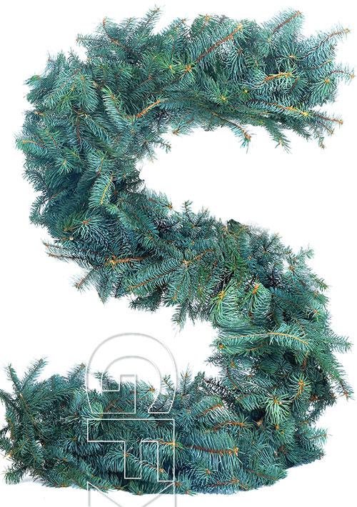 Clear Pine Alphabet 26xJPG