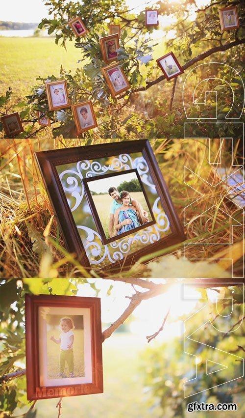 Videohive Magic Tree Photo Slideshow 5519752