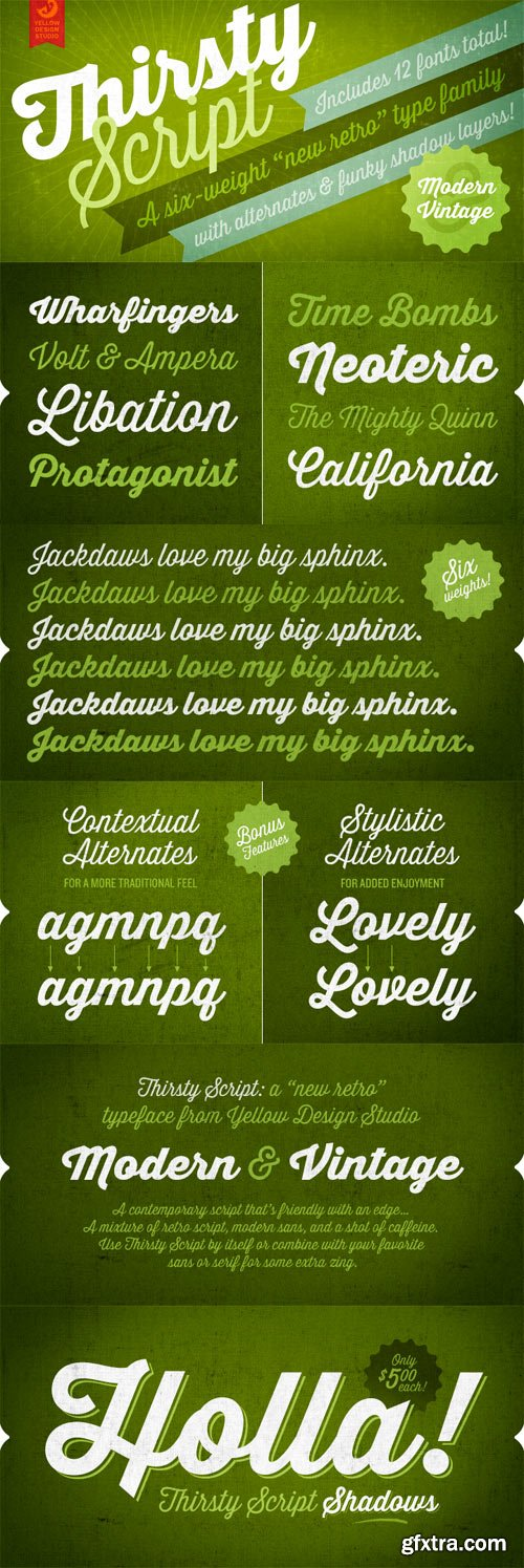 Thirsty Script Font Family - 12 Fonts for 49$!
