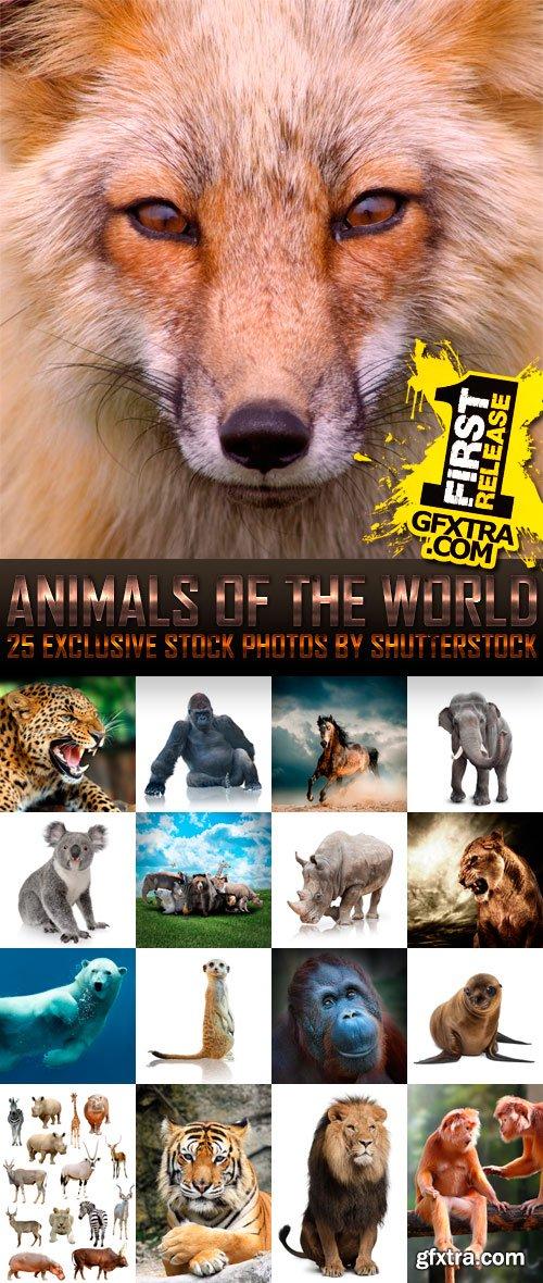 Amazing SS - Animals of the World (vol.2), 25xJPGs
