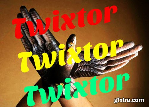 REVisionFX Twixtor Pro 6.0.6 for After Effects / Premiere Pro (Win64)